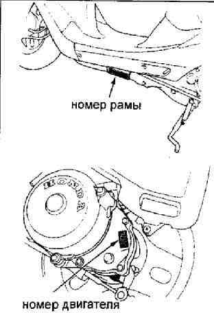 Изначально скутер Honda Dio 18
